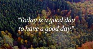 Wisdom by Freija