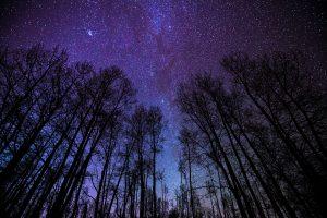 Stargazing in Ontario