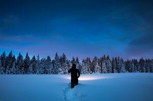 Snowshoeing in Kinghurst Forest