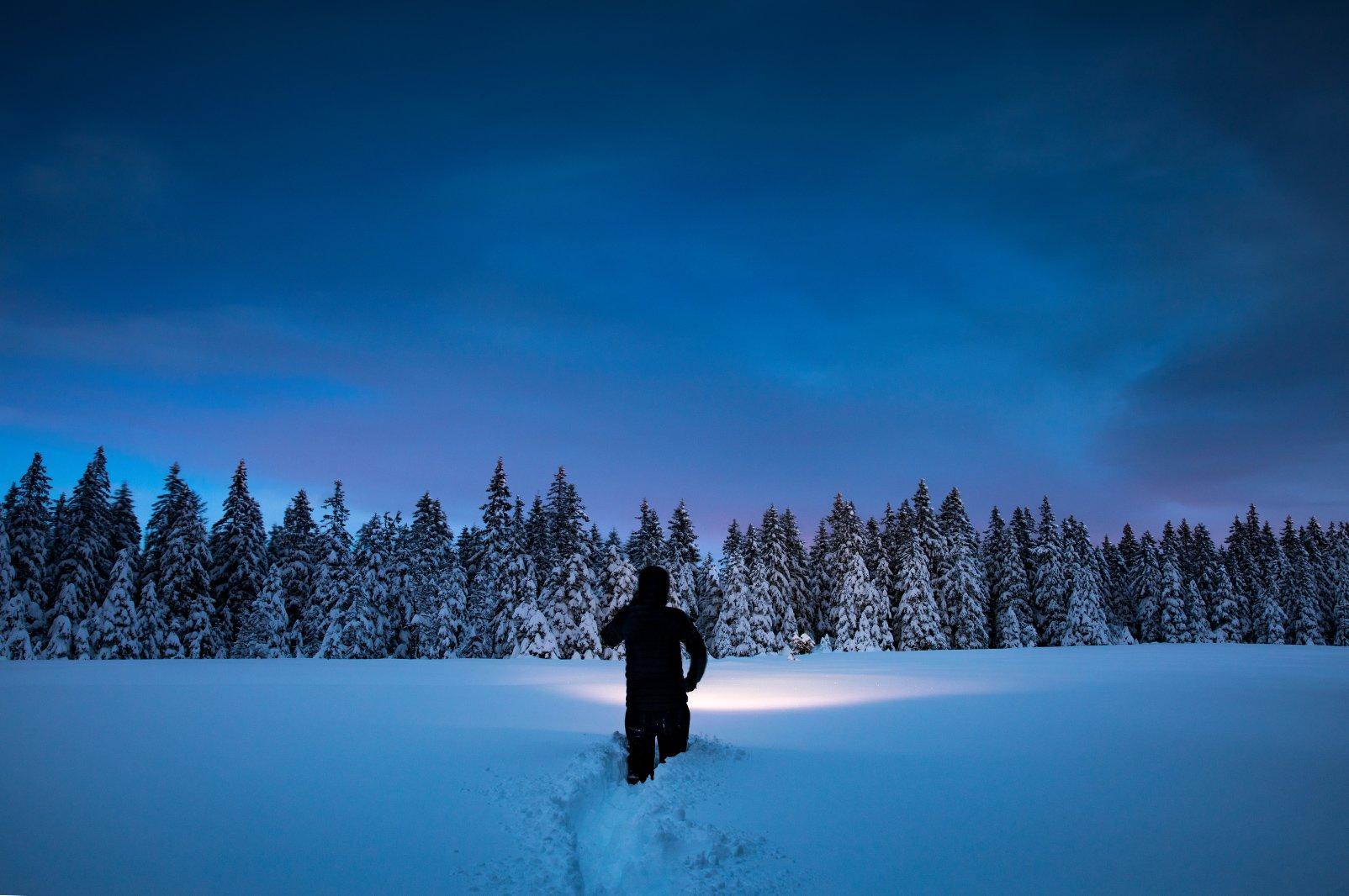 Nighttime Snowshoe